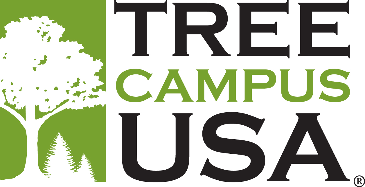 UNL recognized as a tree campus by Arbor Day Foundation